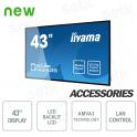"43 ""Prolite 1080P FULL-HD Speakers LCD Monitor - IIYAMA"
