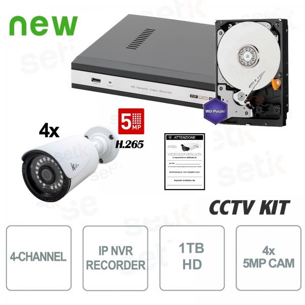 Kit Videosorveglianza 4 Canali IP 5 MP 4 Cam HD1TB - Setik