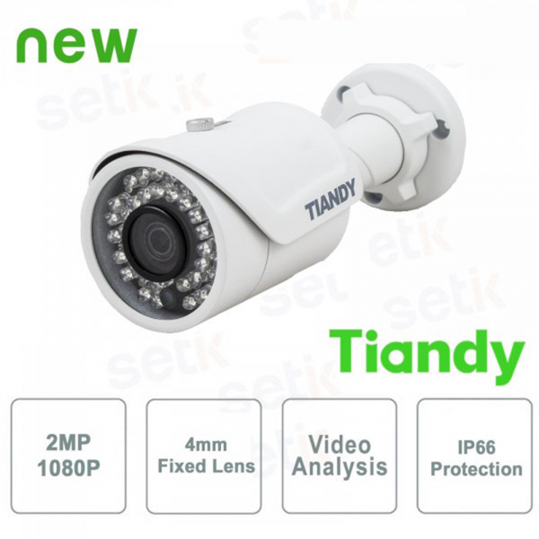IP Network Mini Camera with IR Bullet 2MP 4mm Video Analysis WDR - Tiandy